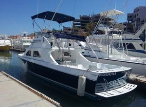 28Ft Blue Tail - Cabo San Lucas Charters