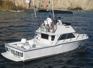 30Ft Don Valerio - Cabo San Lucas Charters