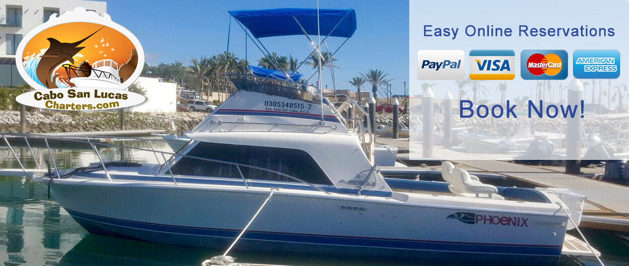 Online Reservation - Cabo San Lucas Charters