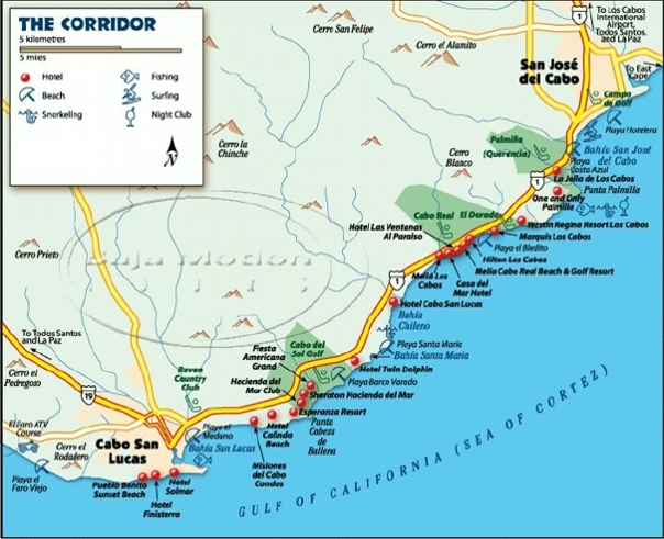 Dock Map - Cabo San Lucas Charters